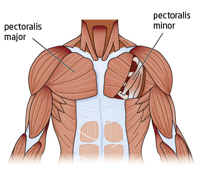 Muscles as these muscles tighten this can also lead to strain and
