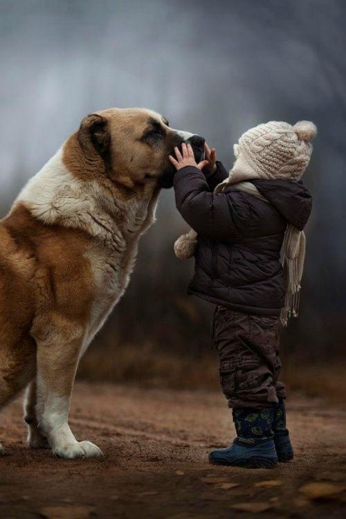 Image credit: Elena Shumilova, Russian photographer