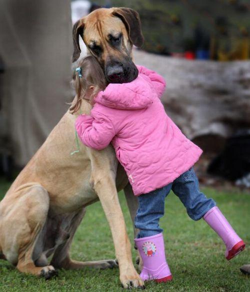Dog comforts little girl.  - image credit: http://imgur.com/ql1pZ
