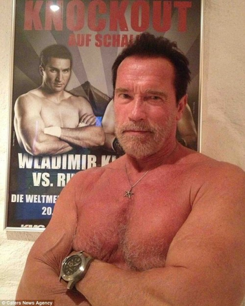 Arnold Schwarzenegger, Photo by Carter News agency