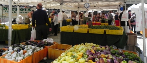 Farmer's Markets